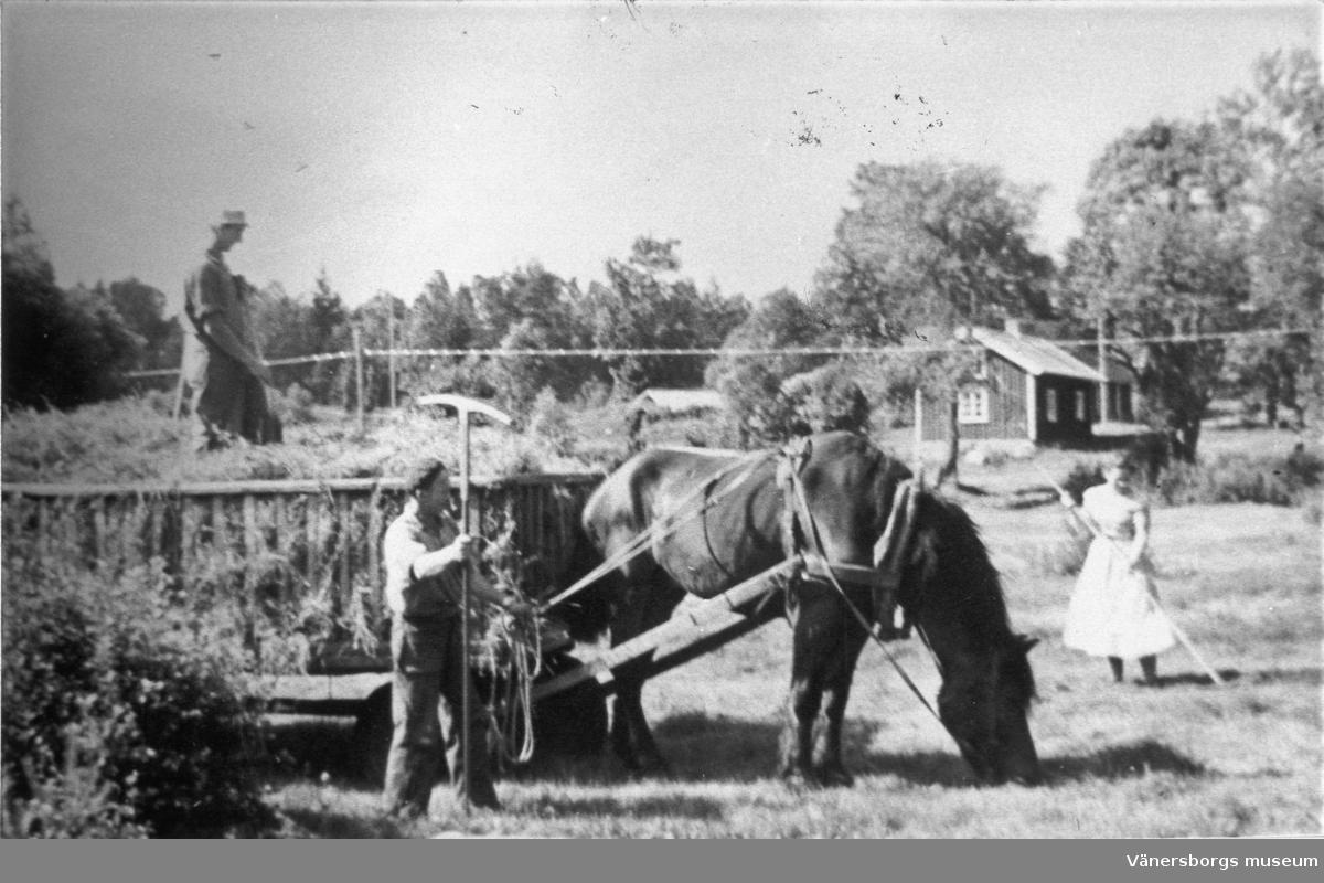J. W. A. YLLANDERS DAGBOK 1889:  Juli d. 1 m.
