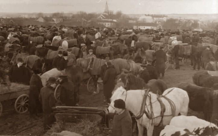 J. W. A. YLLANDERS DAGBOK 1889:  Februari D. 12 T.